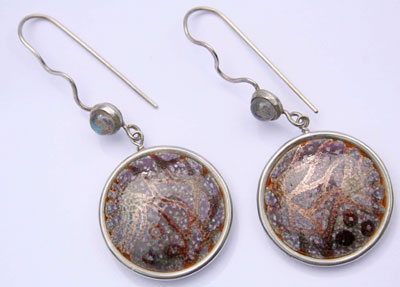 fossil-earrings-1