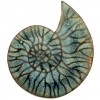 fossil-brooch-3