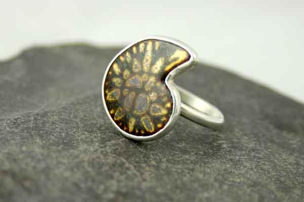 Enamel Ammonite Fossil Ring