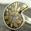 Enamel Ammonite Fossil Ring