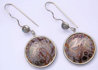 fossil-earrings-1