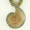 Ammonite-Pendan-Green.jpg